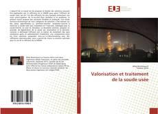 Copertina di Valorisation et traitement de la soude usée
