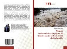 Capa do livro de Risques hydrométéorologiques au Bénin: cas de la Commune de Malanville