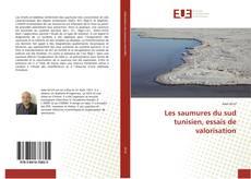 Bookcover of Les saumures du sud tunisien, essais de valorisation
