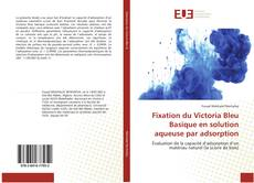 Bookcover of Fixation du Victoria Bleu Basique en solution aqueuse par adsorption
