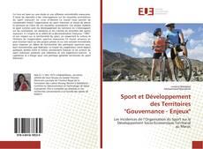 """Couverture de Sport et Développement des Territoires """"Gouvernance - Enjeux"""""""