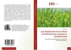 Bookcover of Les bactérioses du riz dues à Xanthomonas oryzae au Burkina Faso
