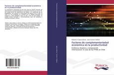 Factores de complementariedad económica en la productividad的封面