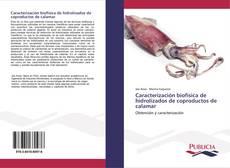 Borítókép a  Caracterización biofísica de hidrolizados de coproductos de calamar - hoz