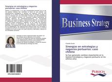 Bookcover of Sinergias en estrategias y negocios portuarios: caso chileno