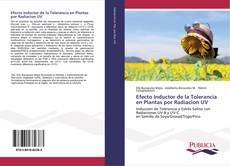 Copertina di Efecto Inductor de la Tolerancia en Plantas por Radiacion UV