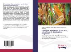 Buchcover von Efecto de un Bioinsecticida en la microflora de Spodoptera frugiperda