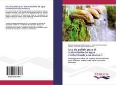 Borítókép a  Uso de pellets para el tratamiento de agua contaminada con arsénico - hoz