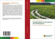 Bookcover of Possibilidade na Existência em Kierkegaard