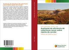 Avaliação da eficiência de coberturas secas sobre rejeito de carvão kitap kapağı