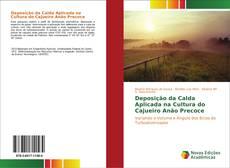 Обложка Deposição da Calda Aplicada na Cultura do Cajueiro Anão Precoce