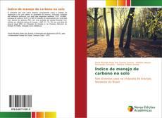 Copertina di Índice de manejo de carbono no solo