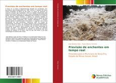 Portada del libro de Previsão de enchentes em tempo real