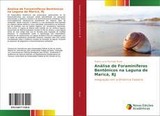 Análise de Foraminíferos Bentônicos na Laguna de Maricá, RJ的封面