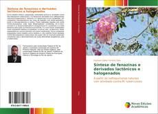 Bookcover of Síntese de fenazinas e derivados lactônicos e halogenados