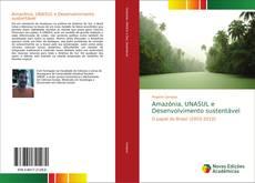 Bookcover of Amazônia, UNASUL e Desenvolvimento sustentável