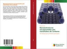 Capa do livro de Nanoestruturas encapsuladas por nanotubos de carbono