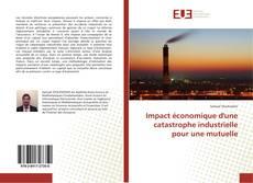 Buchcover von Impact économique d'une catastrophe industrielle pour une mutuelle