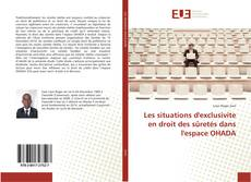 Bookcover of Les situations d'exclusivite en droit des sûretés dans l'espace OHADA