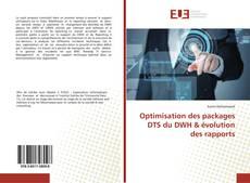 Couverture de Optimisation des packages DTS du DWH & évolution des rapports