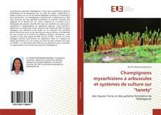 """Champignons mycorhiziens à arbuscules et systèmes de culture sur """"tanety""""的封面"""
