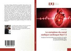 Buchcover von Le complexe du canal sodique cardiaque Nav1.5