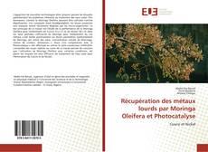 Buchcover von Récupération des métaux lourds par Moringa Oleifera et Photocatalyse