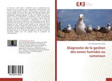 Couverture de Diagnostic de la gestion des zones humides au cameroun
