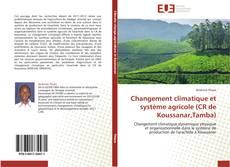 Portada del libro de Changement climatique et système agricole (CR de Koussanar,Tamba)