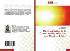 Portada del libro de Étude Numérique de la Convection Naturelle dans une Cheminée Solaire