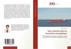 Couverture de Gaz naturels dans la transition énergétique