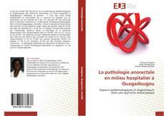 Bookcover of La pathologie anorectale en milieu hospitalier à Ouagadougou
