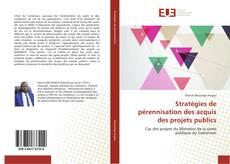 Bookcover of Stratégies de pérennisation des acquis des projets publics