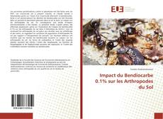 Copertina di Impact du Bendiocarbe 0.1% sur les Arthropodes du Sol