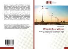 Capa do livro de Efficacité Energétique