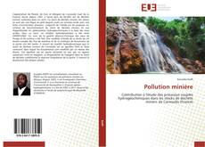 Bookcover of Pollution minière