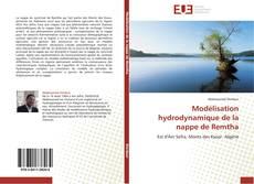 Modélisation hydrodynamique de la nappe de Remtha的封面