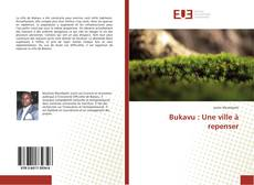 Bookcover of Bukavu : Une ville à repenser