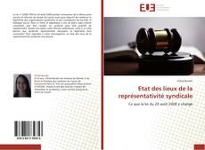 Bookcover of Etat des lieux de la représentativité syndicale