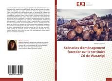 Bookcover of Scénarios d'aménagement forestier sur le territoire Cri de Wasanipi
