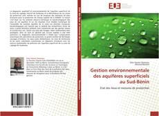 Bookcover of Gestion environnementale des aquifères superficiels au Sud-Bénin