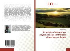Borítókép a  Stratégies d'adaptation paysannes aux contraintes climatiques à Bantè - hoz