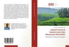 Portada del libro de Capital Social et Gouvernance des Ressources Naturelles