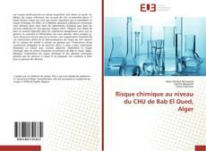 Bookcover of Risque chimique au niveau du CHU de Bab El Oued, Alger