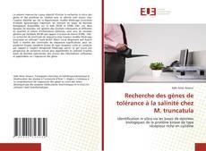 Recherche des gènes de tolérance à la salinité chez M. truncatula kitap kapağı