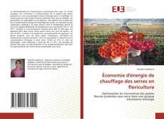 Capa do livro de Économie d'énergie de chauffage des serres en floriculture