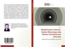 Modélisation Thermo-Hydro-Mécanique des Roches Partiellement Saturées kitap kapağı