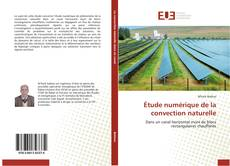 Buchcover von Étude numérique de la convection naturelle