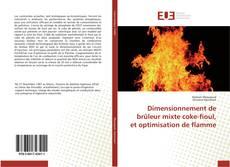 Copertina di Dimensionnement de brûleur mixte coke-fioul, et optimisation de flamme