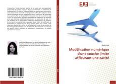 Bookcover of Modélisation numérique d'une couche limite affleurant une cavité